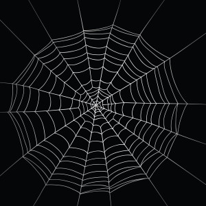 A spider web is often used to illustrate the nature of life: an interdependent system in which a small change in the web will lead to overall structural change.